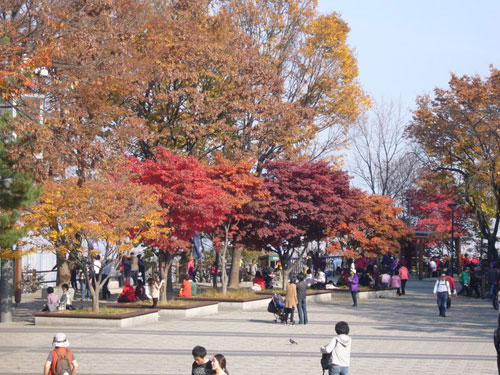 Namsan-Park im Herbst