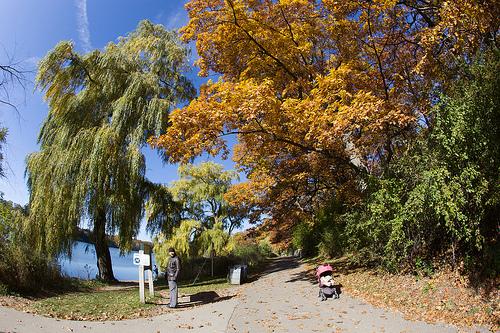Stadtpark in Toronto: High Park