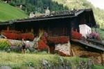 die Bergwelt Österreichs, von vielen Deutschen Urlaubern geliebt