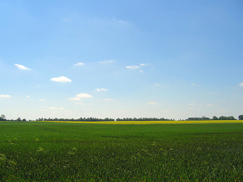 Landschaft in Polen