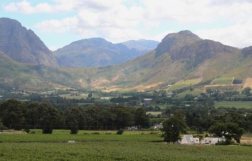Südafrikanischer Wein aus Stellenbosch