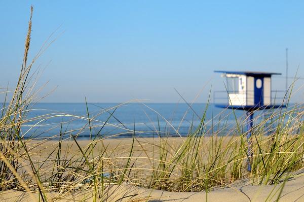 Die saubere Ostsee