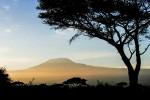 Der Kibo ist mit 5 895 m der höchste Gipfel Afrikas. Wegen der Klimaerwärmung wird seine Eiskappe jedes Jahr kleiner. © Willi Dolder