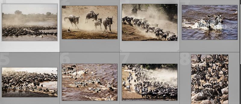 Szenen mehrerer Crossing des Maraflusses. © Willi Dolder