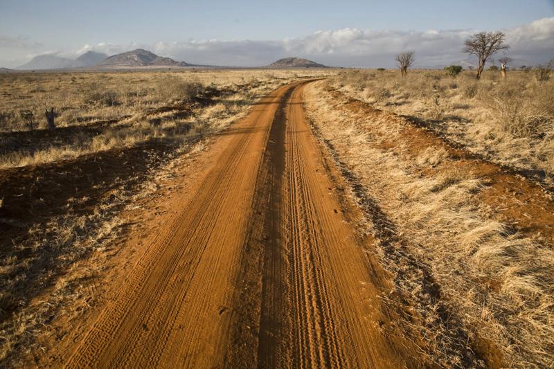 Die Lateriterde, eisenhaltig, deshalb die rote Farbe, ist charakteristisch für den Tsavo Ost Nationalpark. © Willi Dolder
