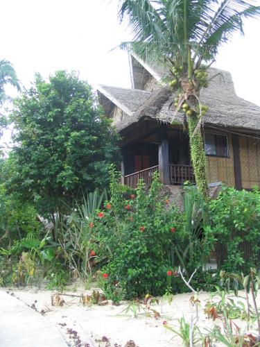 Bambus-Hütte unter Palmen, der Traum vieler Backpcker